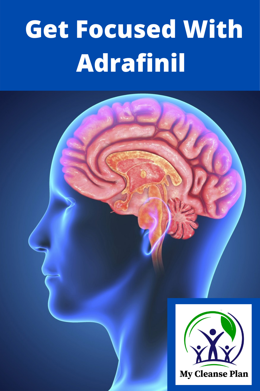 Get Focused With Adrafinil