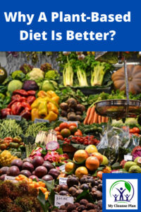 Why A Plant Based Diet Is Better
