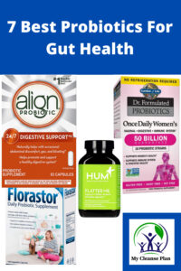 7 Best Probiotics For Gut Health