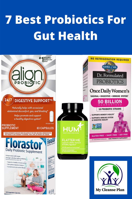 7 Best Probiotics For Gut Health